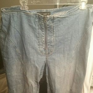 Plus Size 24 Denim Retro Wide Leg Jeans